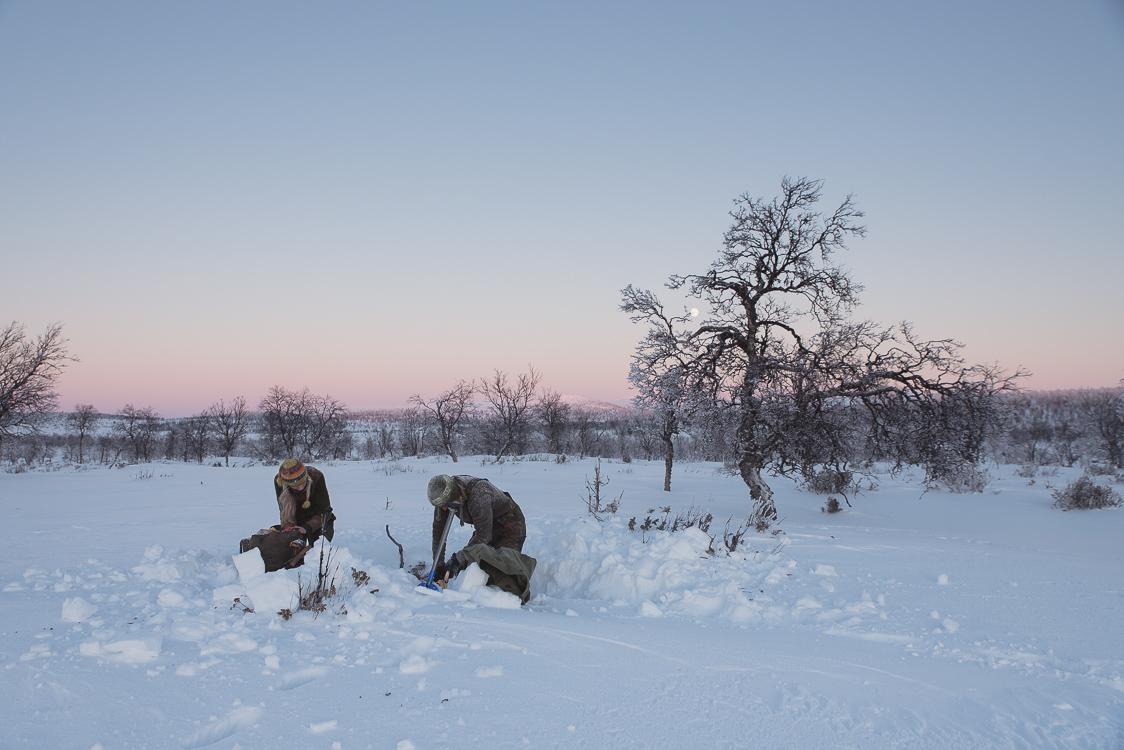 Installation campement en Laponie