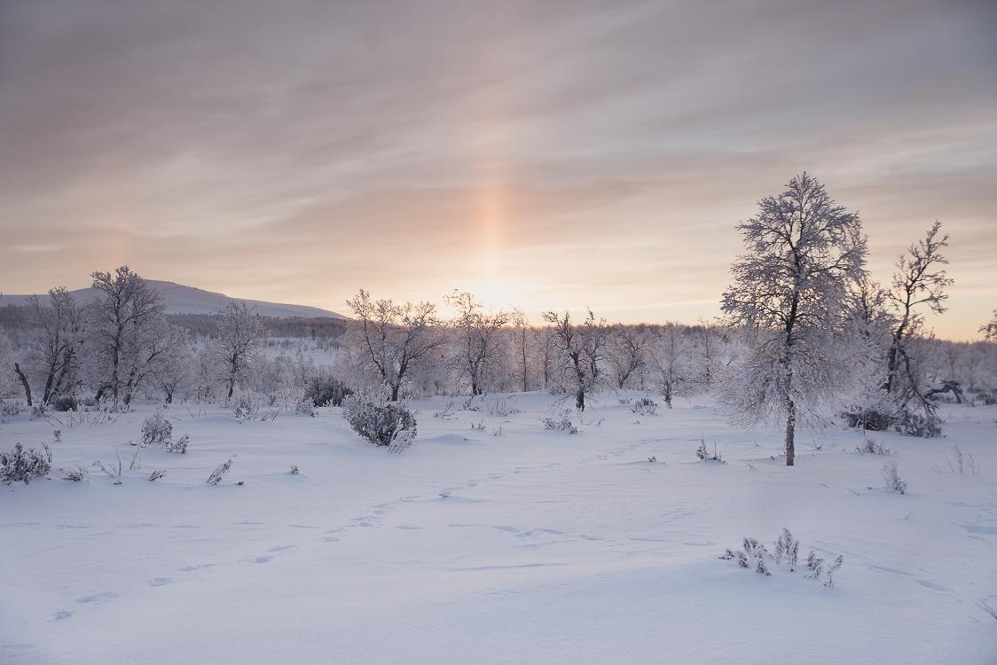 Rayons du soleil Laponie