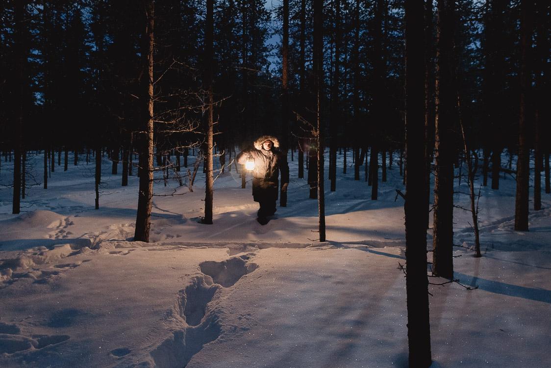 Nuit foret Laponie