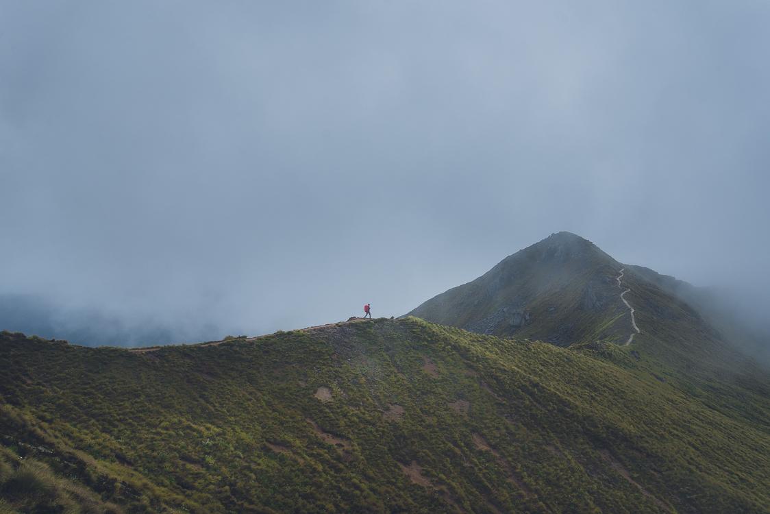 Fog track New Zeland